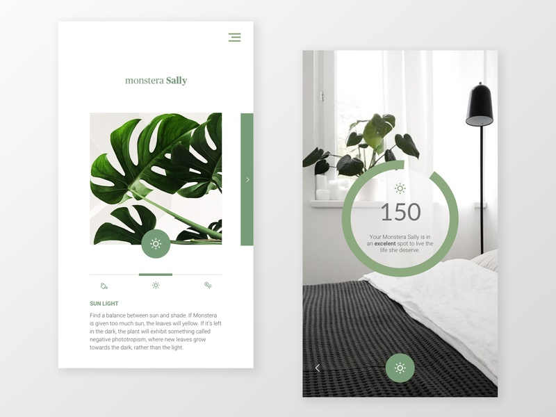 Measure light app for indoor plants modern whitespace less is more icelandic hamburger daylight watering sun appdesign carousel sunlight uidesign ux design application monstera measure light green plants app
