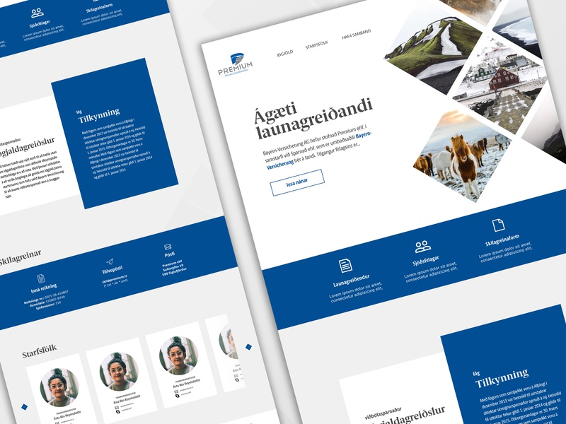 Landing page for an Icelandic pension fund cta banner diamonds modern simple contact employers cards white icon blue iceland ux design uidesign