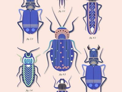 Figuras insects colorfull vector illustration illustrator