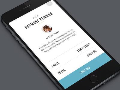 Payment iOS Design ui ios iphone payment form data clean layout app reciept