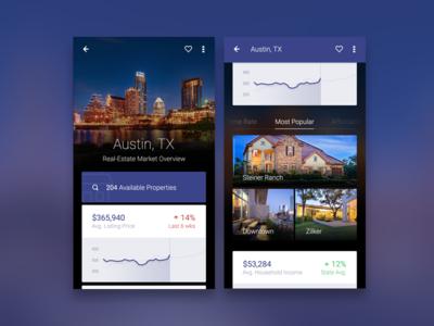 App City Overview data city rent graph realtor location ux ui