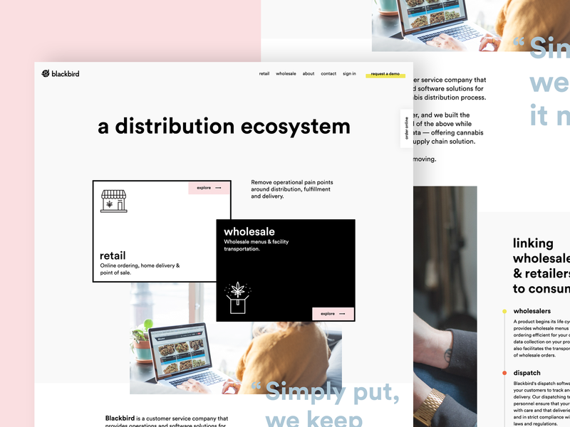 Web UI exploration webdesign brutal black  white layout pastel cannabis clean minimal web