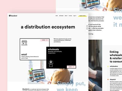 Web UI exploration webdesign brutal black  white layout pastel cannabis clean minimal web