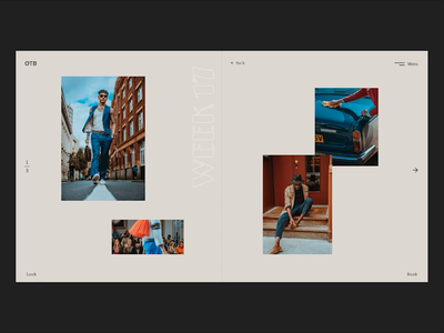 Lookbook concept build music hover effet slide mp4 fireartstudio fireart lookbook javascript css scss developement codepen ux ui design app web typography animation