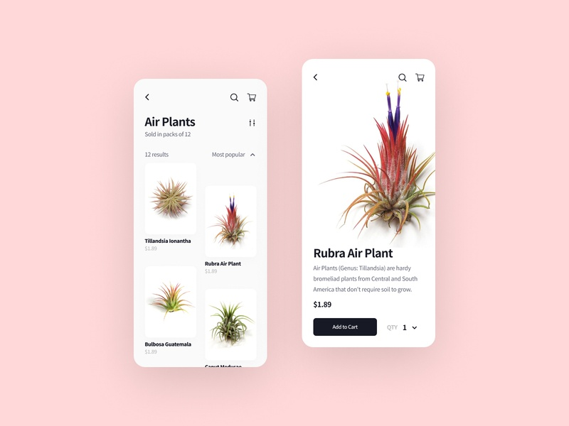 Plant Shop App minimal visual design cards shop product detail products shopping app browse ios ios app shopping checkout mobile app plants plant app ecommerce ecommerce app