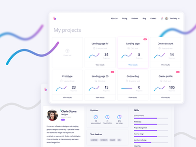 BetaTesta - My projects ui ux icon illustration design branding logo web app