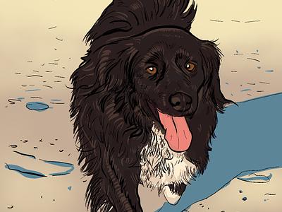Sweeper on the beach dog illustration comics colorful cartoon