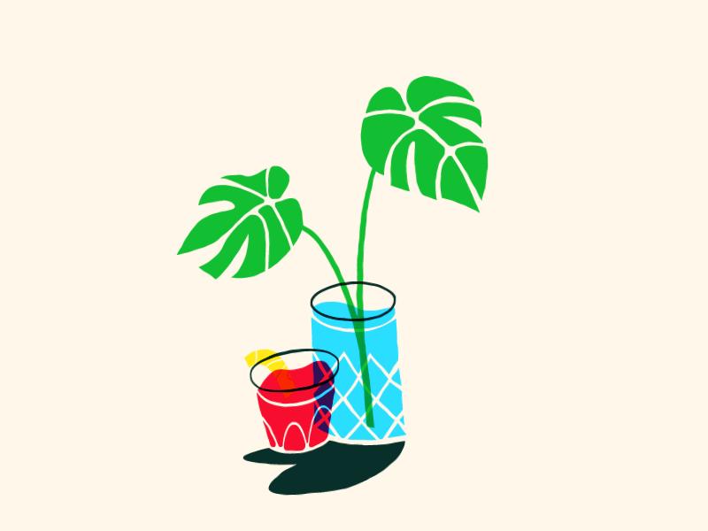 Drinks and Plants multiply houseplant negroni montsera illustration