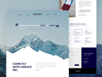 Landing page with a combination of professionalism and fun.