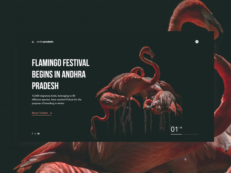 Flamingo Festival layout color black web typogaphy minimal flatdesign flat concept clean abstact design ux ui