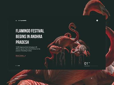 Flamingo Festival layout color black web typogaphy minimal flatdesign flat concept clean abstact design ux ui