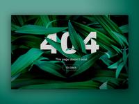 Leafs 404
