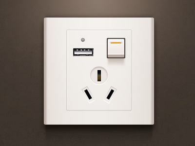 The socket