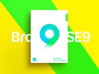 Secure browser se9