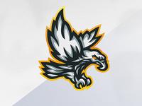 Eagle Mascot Logo!
