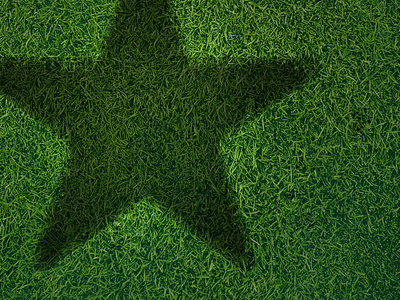 Heineken heineken app grass green star