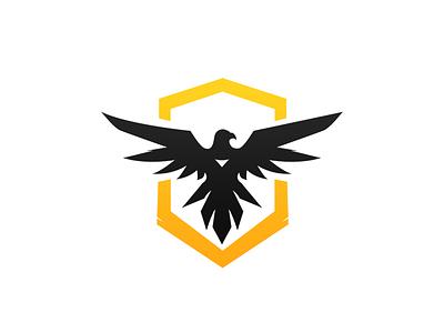 TheHawks hawks