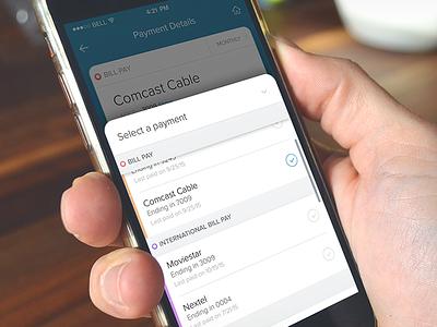 Payment details list list ux ui ios app payment cash