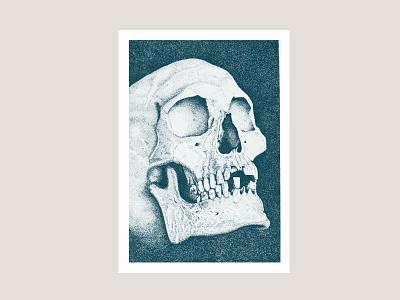Skull illustration skull vintage hand drawing pen illustration