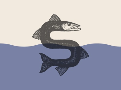 Siena logo drawing lettering typeface custom type logo logotype illustration