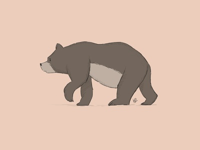 Bear illustration book children kids photoshop animals bear wacom drawing illustration