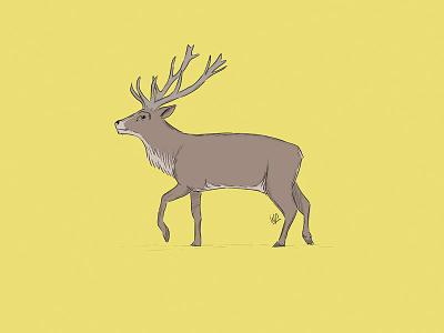 Deer illustration book children kids photoshop animals deer wacom drawing illustration