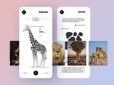 Africa guide lions illustration design giraffe africa mobile