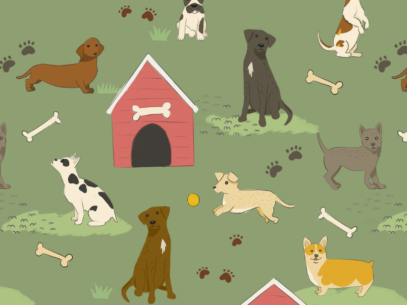 Dog Days Pattern dog park weiner dog illustration pattern bone dachshund labrador puppy dog house dog corgi
