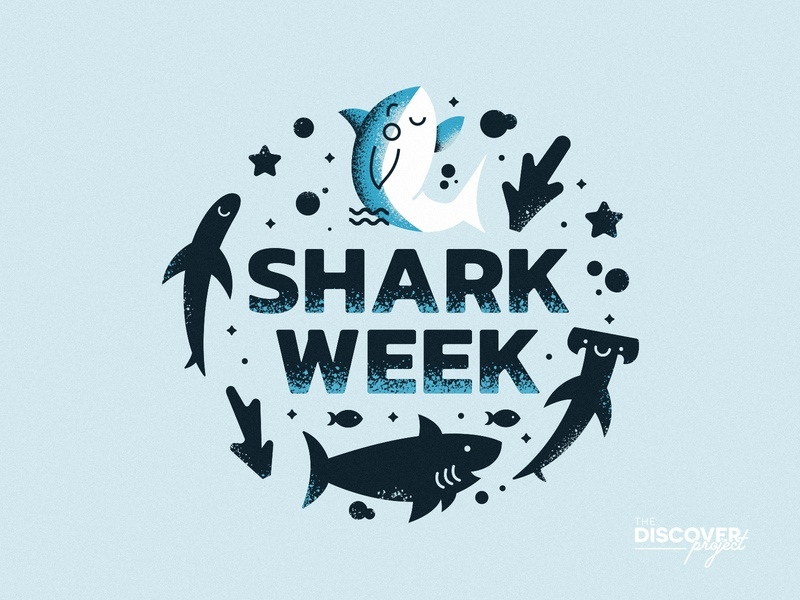 Shark Week | The Discover Project