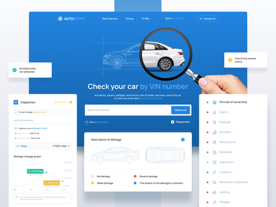Service for checking cars by VIN website web minimal ux ui design