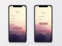 iPhone X interface