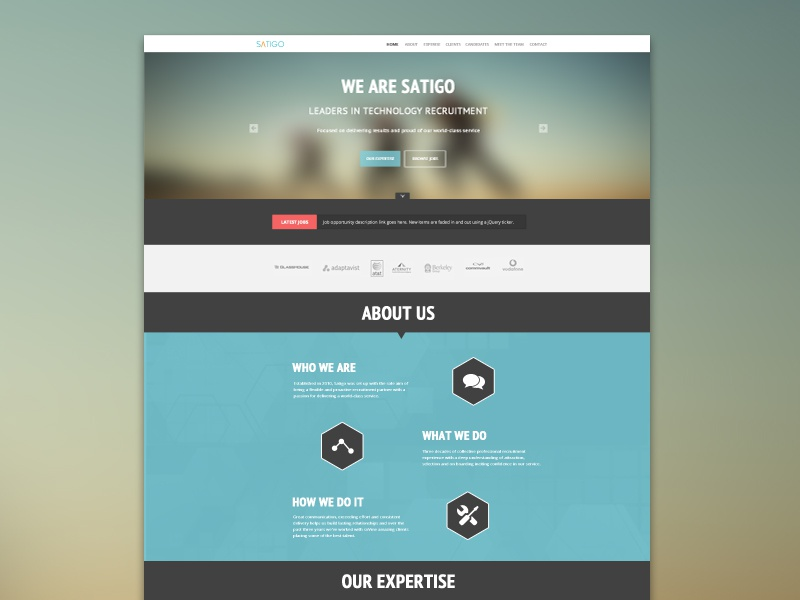 Satigo One Page Website by Balraj Chana - Dribbble