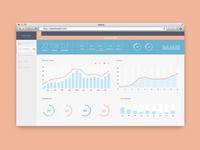 Web Dashboard UI