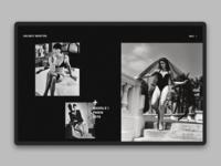 Helmut Newton homepage concept