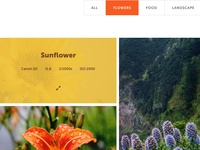 Gallery item on hover