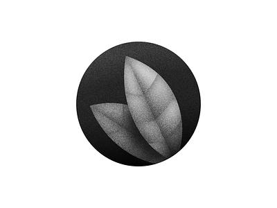 Leafs plant illustration leafs