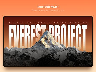 2021 Everest Project web web design illustration ui design