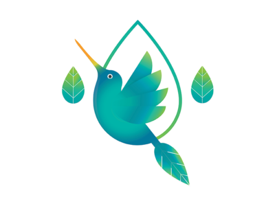 Humming Bird Logo Concept aroma leaf drop bird hummingbird brand debuts dribbleshot drafted dribbble design logo