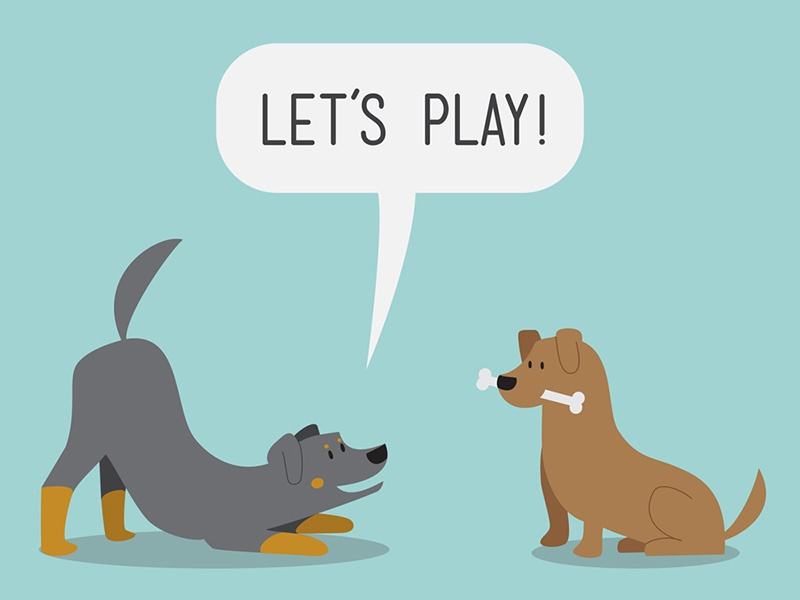 Let's Play! drawing vector art vector illustrator illustration weenie dogs dogs