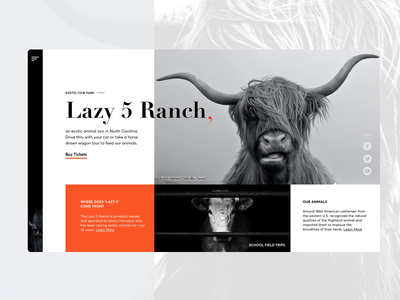 Lazy 5 Ranch website redesign black website black and white cowboy cow motion animation