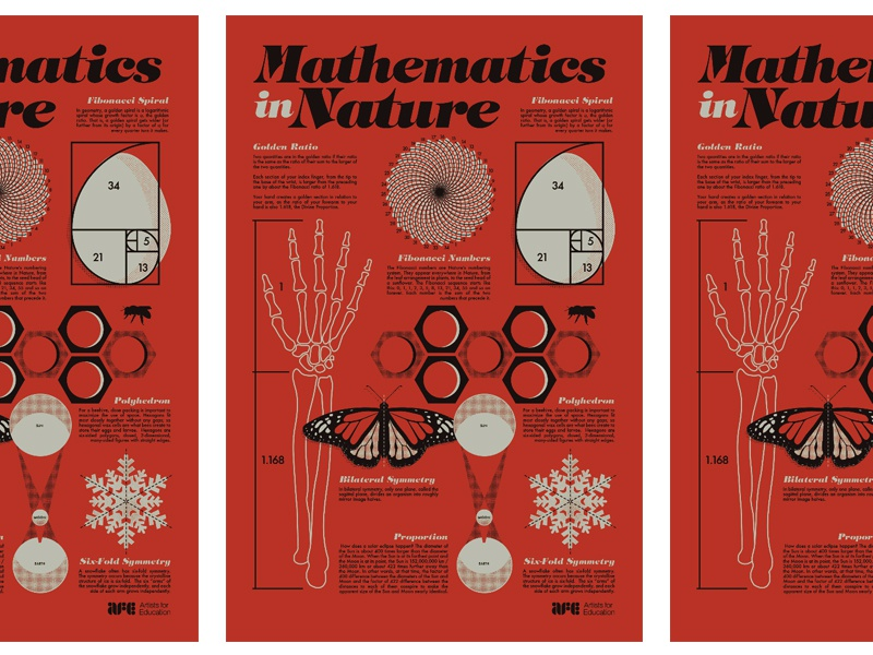 Mathematics in Nature AFE by John Mata on Dribbble