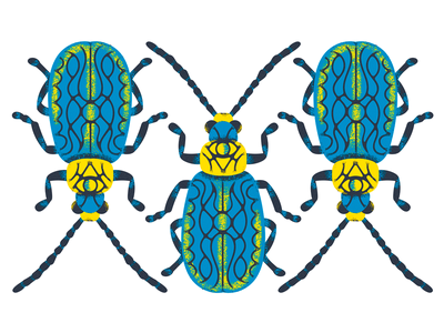 Beetle Illustration wip color texture pack illustration beetle sticker