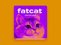 FatCat DevStudio