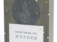 Recapturing the Wonder Book Cover