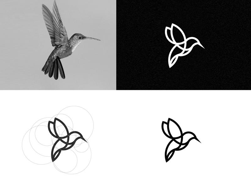 Humming Bird illustration vector branding line animal logo bird humming