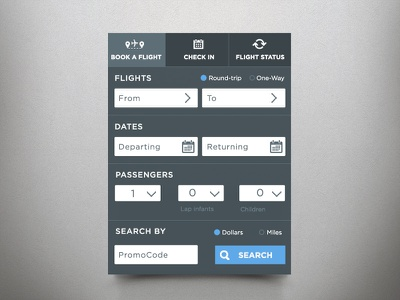 Booking UI/UX booking airlines widget ux ui design
