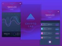 Crypto Lab