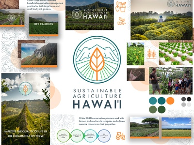 trailkick-sustainable-agriculture-hawaii-3.jpg