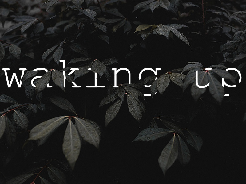 Waking Up natural nature logo sermon logo photoshop church graphic sermon typography type effect liturgy church