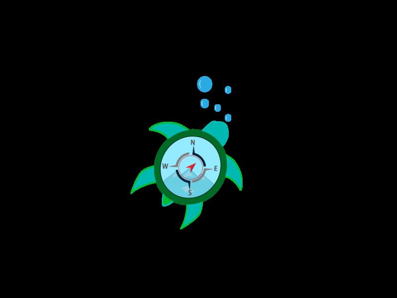 creative tortoise compass logo flat character vector creative creative design flat  design branding design logo illustration brand icon graphic  design